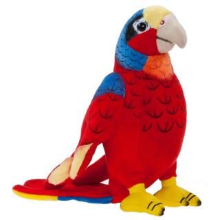 Misanimo Papagei