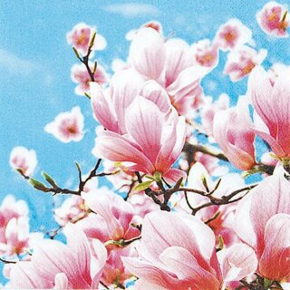 Serviette - Blooming Magnolia