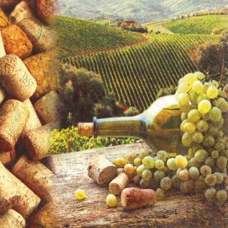 Serviette - Vineyard