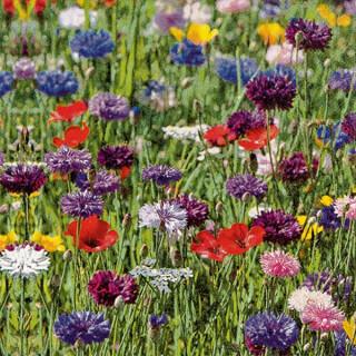 Serviette - Flower Field