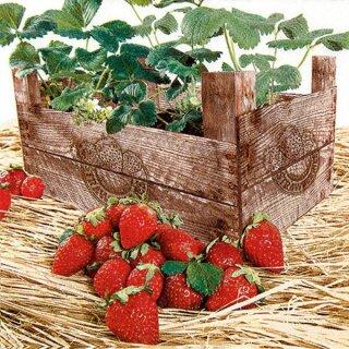Serviette - Strawberry Case