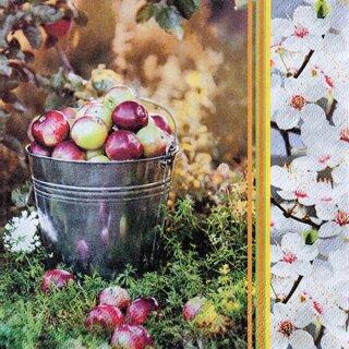 Serviette - Apple Season