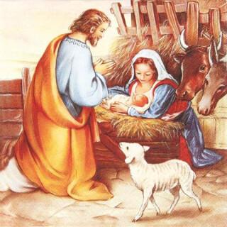 Serviette - Jesus is born
